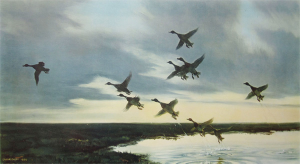 Sir Peter Markham Scott: Mallards Going to Sea - A Tidal Pool on the Salting