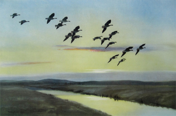 Sir Peter Markham Scott: Morning Flight Over the Marsh