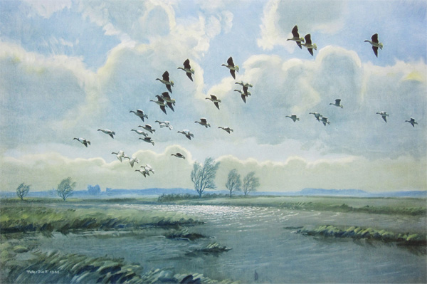 Sir Peter Markham Scott: Pink Feet in the Green Marshes